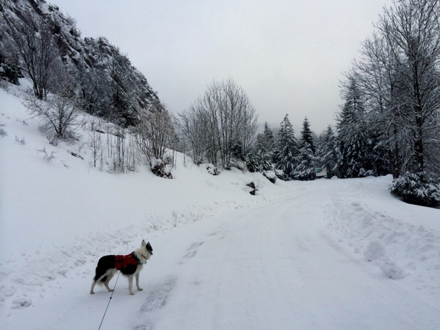 The road up into our village was sheet ice with patches of deep snow