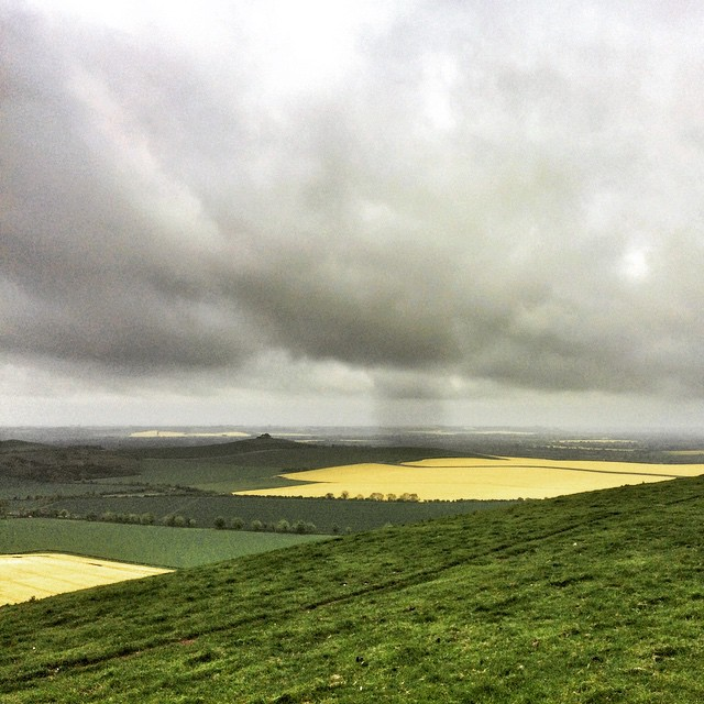 Looking south out onto the fields of rapeseed